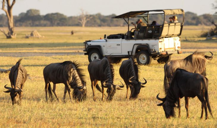 luxury safari in Africa